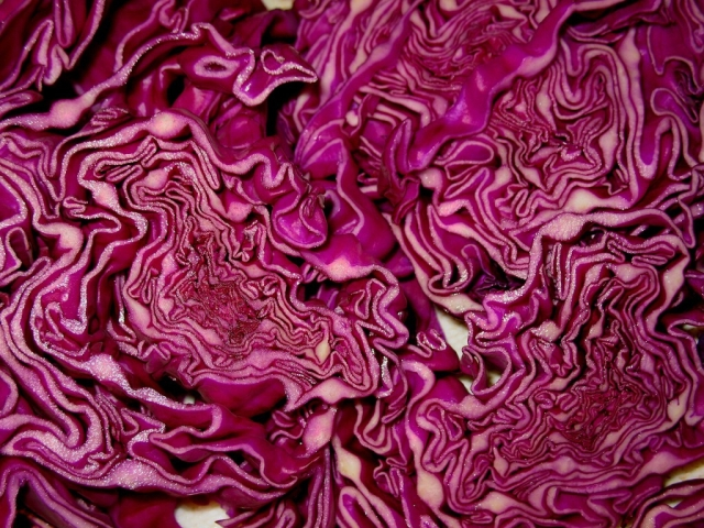 red-cabbage.jpg